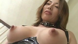 Mistress got her slave all messed up for total humiliation