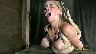 Rather flexible big breasted blonde is hogtied and hung above the floor